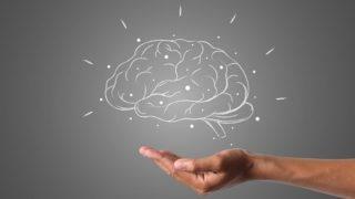 感情を揺さぶる脳