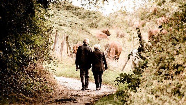 老人 歩く
